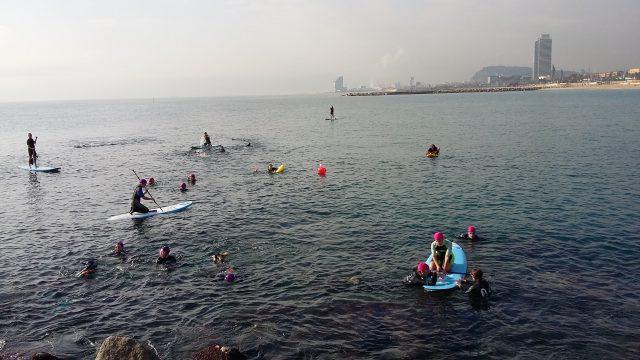 Els hotels de Barcelona recullen 250kg de residus marins #HotelsCompromesos